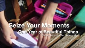 Janne Willems - Seize your moments - One year of beautiful moments across the world